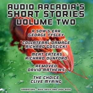 Audio-Arcadia's-Short-Stories---Volume-Two